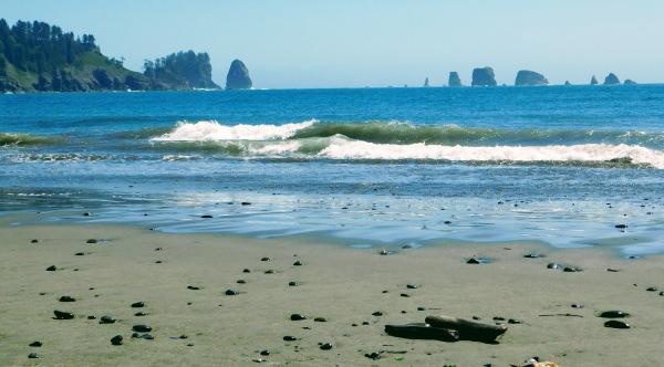 La Push beach